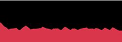 SanDisk Professional Logo 2